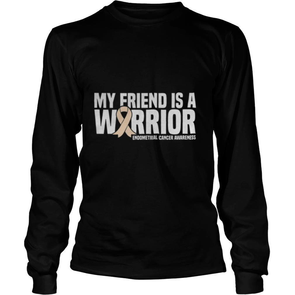My Friend is a Warrior Endometrial Cancer Awareness shirt